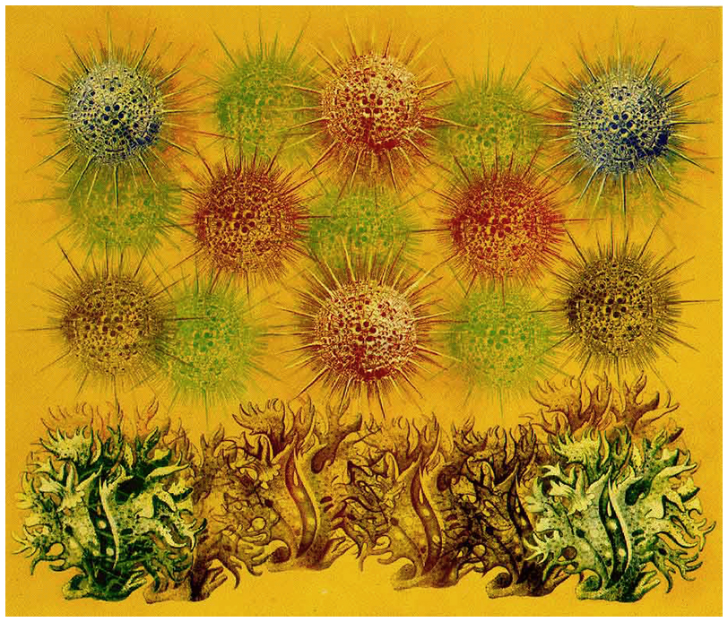 Painting with Radiolaria and Milliporidae, 1997–98