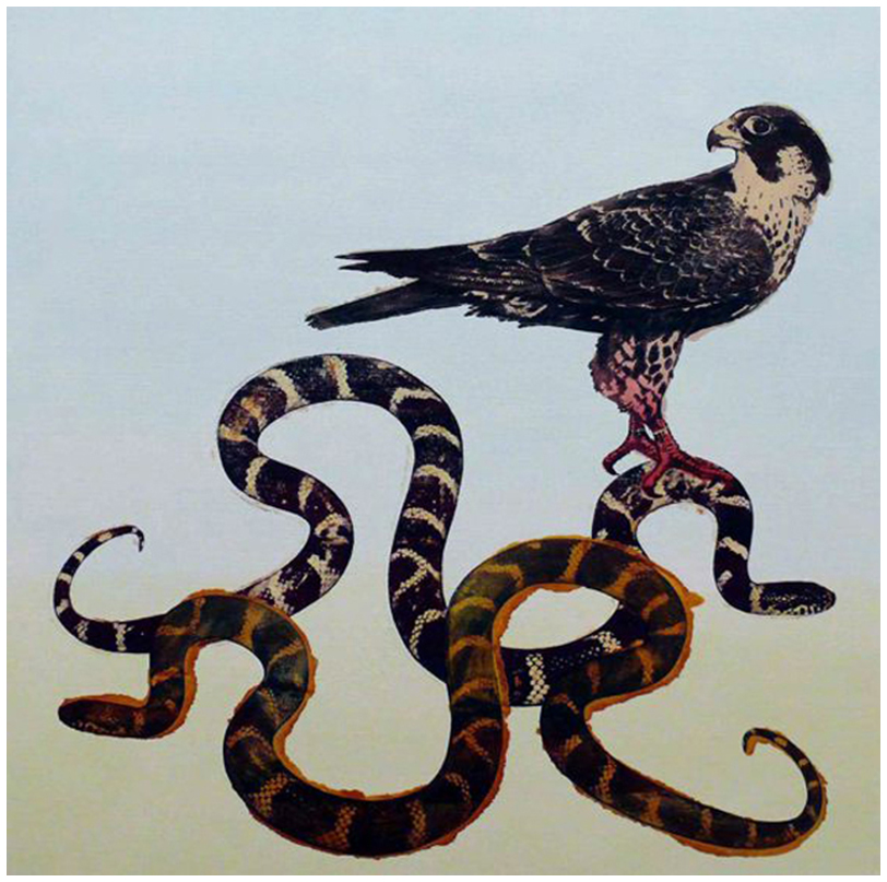 Peregrine Falcon Over King Snake (2008)